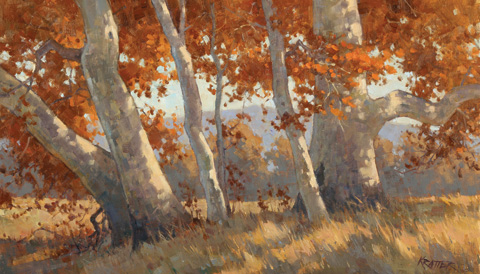 Paul Kratter | Celebrating Nature