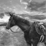 Kim Taggart, Finnigan, graphite, 29 x 29.