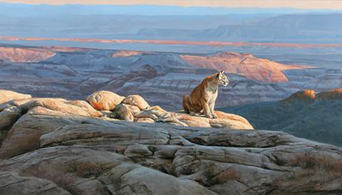 Edward Aldrich | Called by the Wild