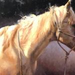 Jenny Buckner, Manely Light and Shadow, oil, 20 x 30.