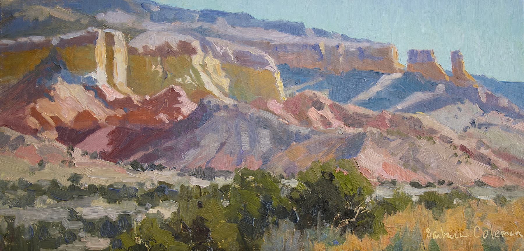 Cliff Faces by Barbara Coleman.