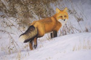 William Alther, Winter Luster, oil, 24 x 36.