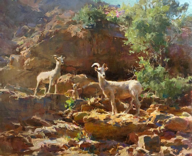 Kyle Ma, Zion Bighorn Sheep, oil, 20 x 24.